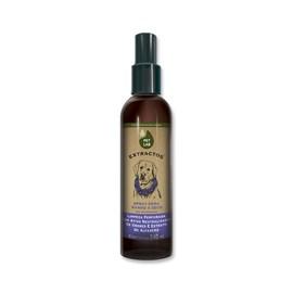Spray banho a seco para cães - Lavanda - 240 ml